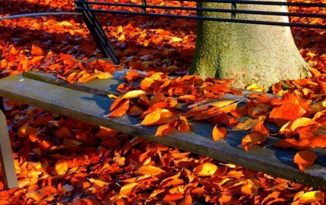 Jesen u mom kraju