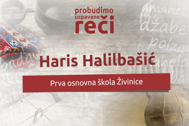 Vakat je da te Kradem Haris Halilbašić