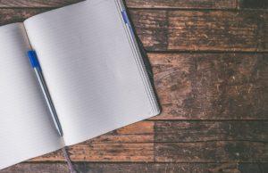 stranica-dnevnika